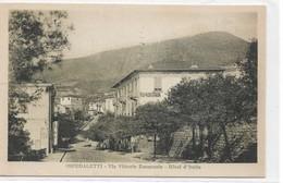 CARD  OSPEDALETTI VIA VITTORIO EMANUELE -ALBERGO D'ITALIA   (IMPERIA)FP-V-2-    0882-28670 - Imperia