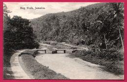 Jamaica - Jamaique - Bog Walk - Edit. J.W. CLEARY - Jamaïque