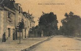 41 BLOIS. CPA. RARETE. AVENUE DE PARIS COTE NORD. - Blois