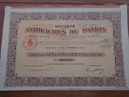 INDOCHINE - ANTHRACITES DU TONKIN - ACTION 100 FRS - PARIS 1925 - Shareholdings