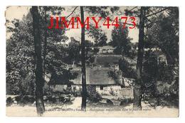CPA - Habitations Maraichines Dans La Forêt De Sapins En 1924 - St JEAN DE MONTS 85 Vendée - Edit. J. Nozais N° 5 - - Saint Jean De Monts