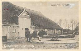 Publicité Staatsspoorwegen (Noord-Brabant), Firma, Ferme - Beperkte Dienstregeling Van 5 Juli 1915 (horaires Des Trains) - Niederlande