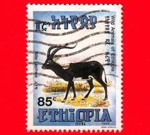 ETIOPIA - Usato - 1989 - Fauna Selvatica - Lichi Del Nilo - Antilope - Kobus Megaceros - 85 - Etiopia