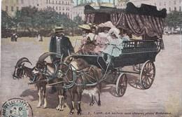 Lyon. La Voiture Aux Chèvres , Place Bellecour - Lyon