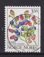 Norway 1995 Mi. 1175 Y    3.50 (Kr) Waldbeeren Heidelbeere Deluxe FETTSUND - Norwegen