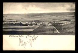 57 - CHATEAU-SALINS - VUE GENERALE - Chateau Salins