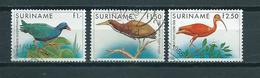 1985 Suriname Complete Set Birds,oiseaux,vogel Used/gebruikt/oblitere - Surinam