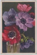 Anemone Coronaria - Thor E Gyger - Fiori