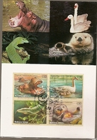 United Nations & Maxi, Vereinte Nationen, Endangered Species, Fauna, Animals, UNO  Geneve 1993 (141) - Briefe U. Dokumente