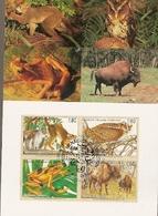 United Nations & Maxi, Vereinte Nationen, Endangered Species, UNO Geneve 1996 (158) - Genf - Büro Der Vereinten Nationen