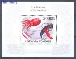 Comoros 2009 Mi Bl 578 MNH ( ZS4 COMbl578 ) - Meereswelt