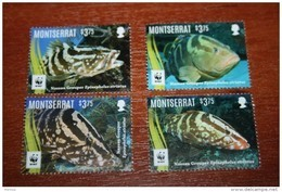WWF  Montserrat  2016  Fish - Vissen