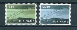 1999 Suriname Complete Set Coppename Brug Used/gebruikt/oblitere - Suriname