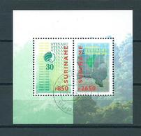 1999 Suriname Complete M/Sheet Stinasu Used/gebruikt/oblitere - Suriname