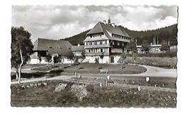 AHA Gasthaus Und Pension Auerhahn - Hotels & Gaststätten
