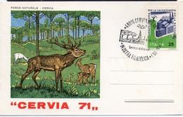 CERVIA 1971 MOSTRA FILATELICA CERVO CERF DEER PARCO NATURALE AMBIENTE MILIEU - Autres