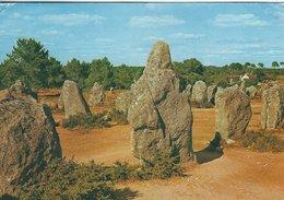 Carnac (Morbihan) Megalithes. France.  B-3523 - Dolmen & Menhirs