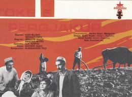 """CPM Cinéma: C123 Affiche Du Cinéma ALBANIA: Filmu """"TOKË E PËRGJAKUR"""" Di K. Blushi/ N. Tafa è L. Terpini 1976 - Manifesti Su Carta"""