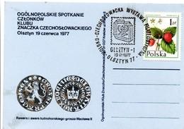 Olsztyn 1977 - Expo Poland Czechoslowacka Tchécoslovaquie Tchèque - Affrancature Meccaniche Rosse (EMA)