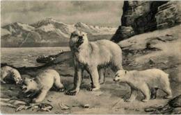 Berlin - Gruss Aus Dem Skandinavia Etablissement - Polar Bear - Allemagne