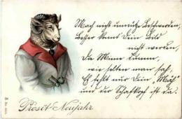 Schaf In Kleider - Gekleidete Tiere