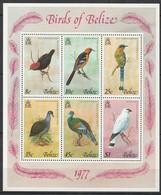 BELIZE - BIRDS Of BELIZE - BLOC N°2 **  (1977) Oiseaux - Belize (1973-...)