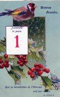 Nouvel An, Premier Janvier, Oiseau, Gui, Psaume - Nouvel An