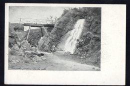 OCEANIE - NOUVELLE CALEDONIE - Cascade Jardin De La Ville - Edition Talbot - Neukaledonien
