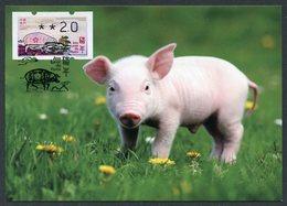 MACAU / MACAO (2019). ATM Klüssendorf - Ano Lunar Do Porco / Lunar Year Of The Pig / Année Du Cochon - Maximum Card - 1999-... Región Administrativa Especial De China