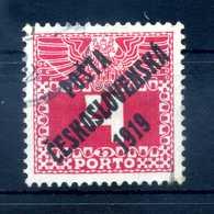 1919 CECOSLOVACCHIA Yv. 115 Usato - Cecoslovacchia