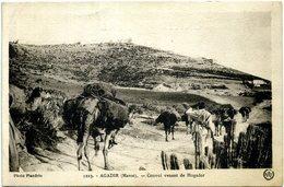 Maroc - Agadir - Convoi Venant De Mogador. - Agadir