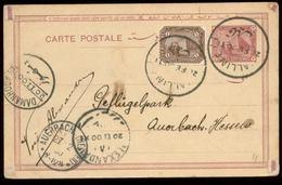 S7580 - Ägypten GS Postkarte + Marke: Gebraucht Kalline - Auerbach 1900, Bedarfserhaltung. - Ägypten