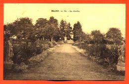 """CPA 52 Malroy """" Le Jardin """" école Professionnelle Libre De Malroy - Dammartin Sur Meuse - Frankreich"""