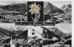 AK 0156  Kleines Walsertal - Echter Edelweissgruss Um 1950-60 - Kleinwalsertal