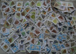 België 500 Zegels/timbres Vlinders Papillons - Timbres