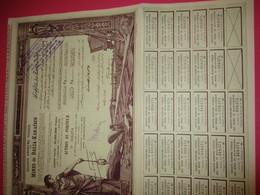 Action  De 100 Francs Au Porteur Entièrement Libérée/Mines De Balia-Karaïdin/Turquie/Constantinople/ 1926       ACT168 - Pétrole