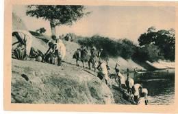 AFRICA ORIENTALE - TRASPORTO DELL'ACQUA - Etiopia