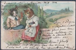Fantaisie, Chat. - Dressed Animals