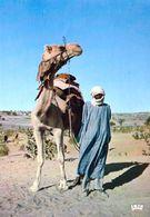 1 AK Tschad - République Du Tchad * Mann Mit Kamel - IRIS Karte 5427 * - Tschad