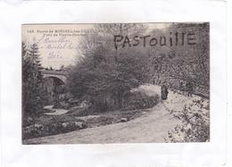 CPA: 14 X 9   -   143.  Route De MIRIBEL-les-ECHELLES  -  Pont De Pierre-Chaves - France