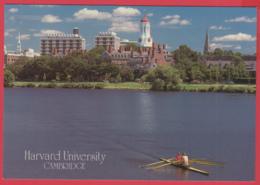 HARVARD UNIVERSITY - Cambridge Massachusetts -Gd Format - SUP** 2 SCANS - Boston