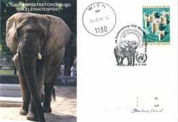 8269  Eléphant: Oblit. + C.p. Zoo Vienne, Nations Unies 1994 - Elephant Special Cancel + Postcard, UN Vienna Zoo - Elefanten