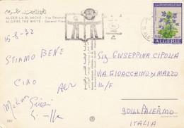 ALGERIA / ITALIA  -  Viaggiata _ 1972 - Algeria (1962-...)