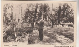 Cpsm 40 Chasse Aux Palombes , Le Sol - France
