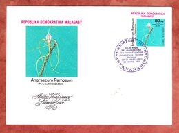 FDC, Orchidee Angraecum Ramosum, Antananarivo 1981 (69503) - Madagaskar (1960-...)