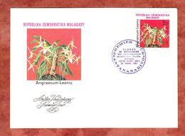 FDC, Orchidee Angraecum Leonis, Antananarivo 1981 (69504) - Madagaskar (1960-...)