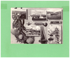 1959 MOLLUSCHI SU CARTOLINA DI MESSINA - Pesci E Crostacei