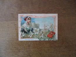 FLEURS DE FRANCE LANGUEDOC NARCISSE - Trade Cards