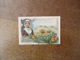 FLEURS DE FRANCE LORRAINE ARNICA DES MONTAGNES - Trade Cards