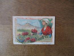 FLEURS DE FRANCE FRANCHECOMTE VULNERAIRE DES MONTAGNES - Trade Cards